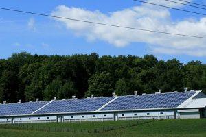business renewable energy