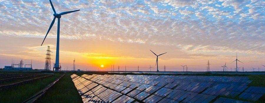 Trump Slaps Tariffs on Imported Solar Panels in Major Blow to Renewable Energy
